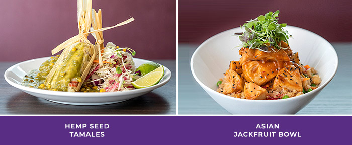Tryst Cafe Entrees: Hemp Seed Tamales, Asian Jackfruit Bowl